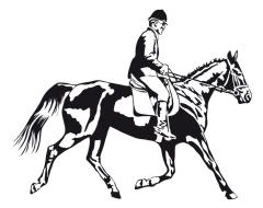 Riunione Cavalieri